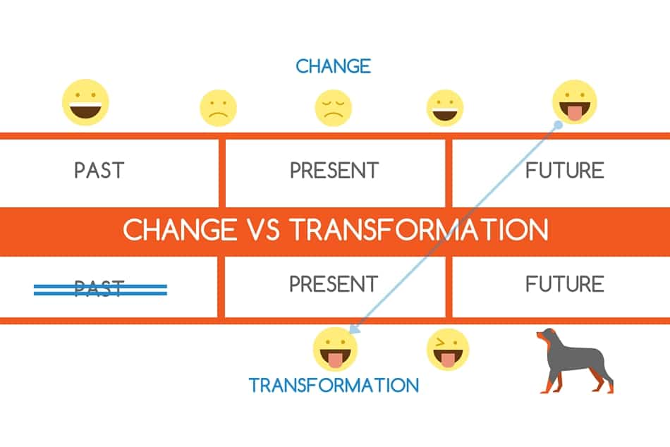 Organizational change vs business transformation intelivate team leadership development