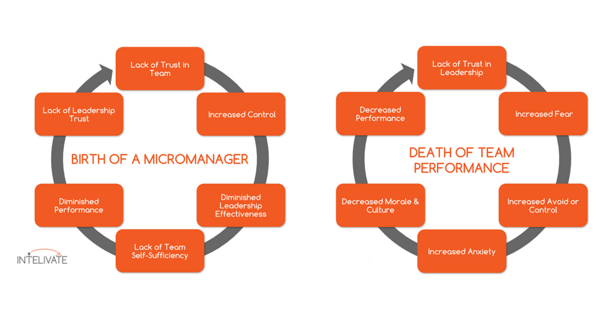 emotional functional effects micromanagement toxic leadership team performance intelivate