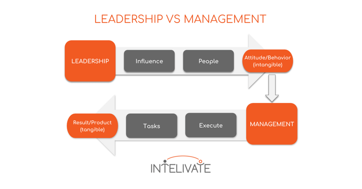 lead vs manage intelivate kris fannin leadership strategy