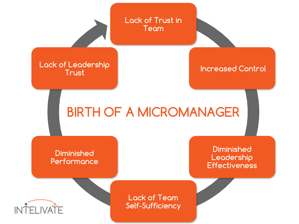 toxic leadership micromanagement team performance cycle intelivate kris fannin